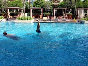 Pool Festive Hotel